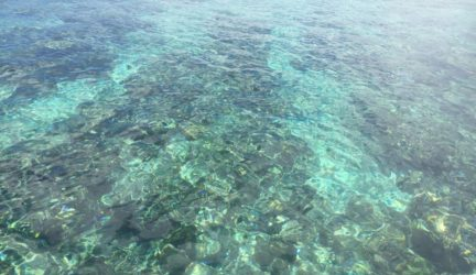 Crystal clear waters Bunaken
