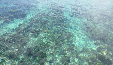 Crystal clear waters Bunaken