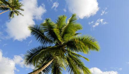 Moorea McLennan_Tahiti_2013_0335