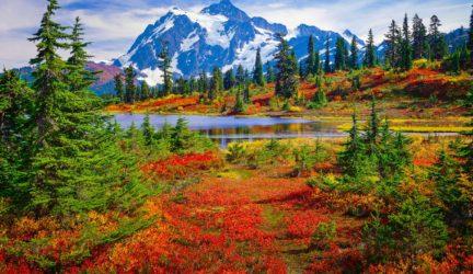 Mt. Shuksan and Picture Lake in brilliant autumn colors